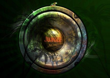 دانلود مجموعه افکت های صوتی سایت Audiojungle
