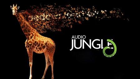 دانلود مجموعه عظیم افکت ها و آهنگ های آماده صوتی AudioJungle
