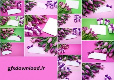 عکس گل لاله و کارت تبریک